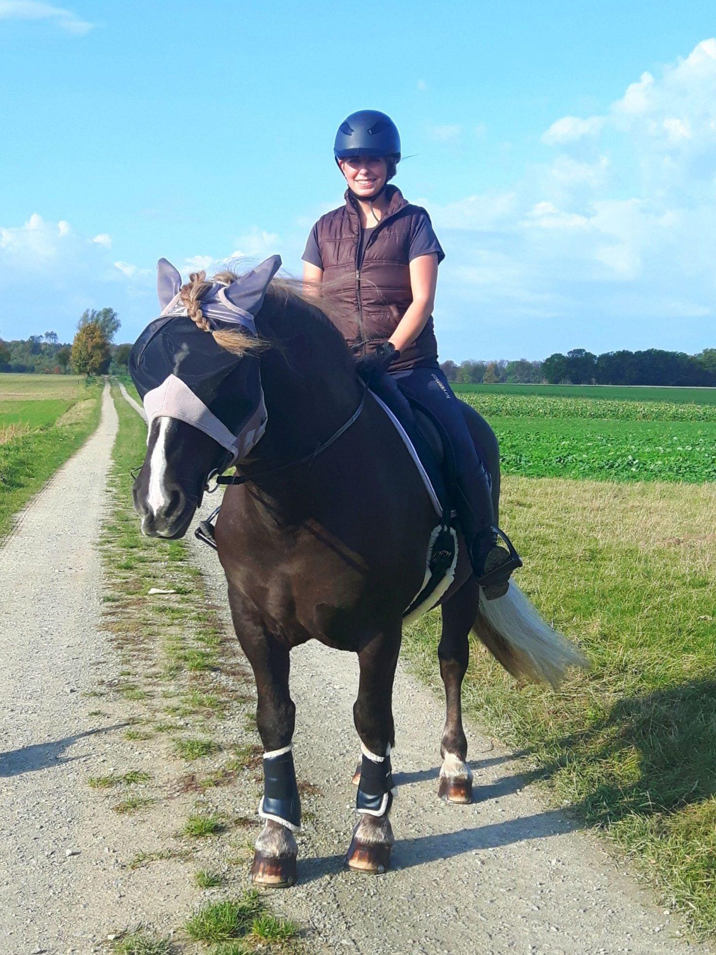 Reiterin auf einem Shire Horse