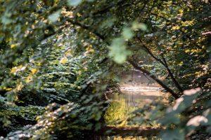 Natur in Einbeck