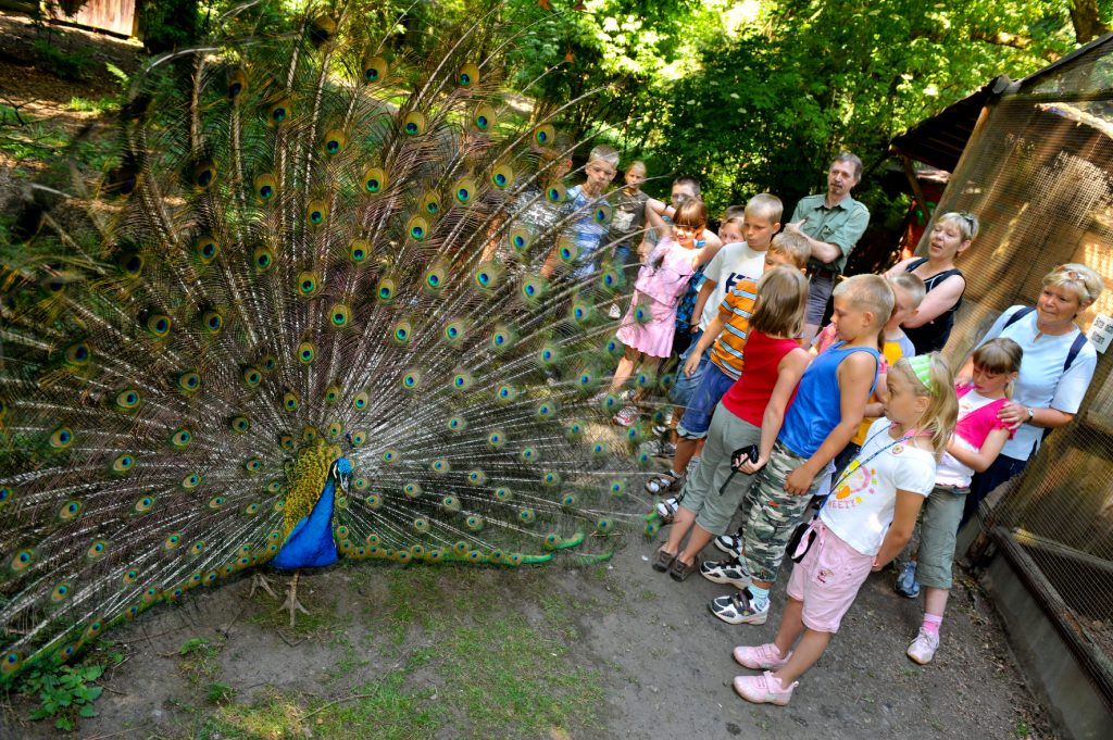 Waldvogelpark